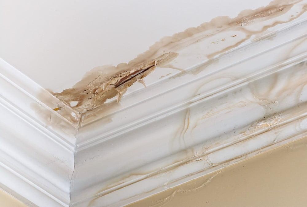 3 gode råd, hvis du har fået en vandskade i din bolig