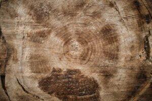 Du kan lave dette på en båndsav til træ